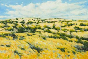 Light on the Hills by Dolores Justus